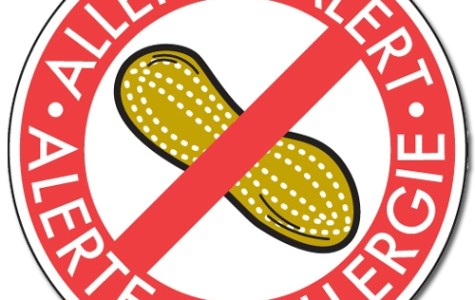 The pesky peanut: Students with peanut allergies are in constant danger to exposure while at school