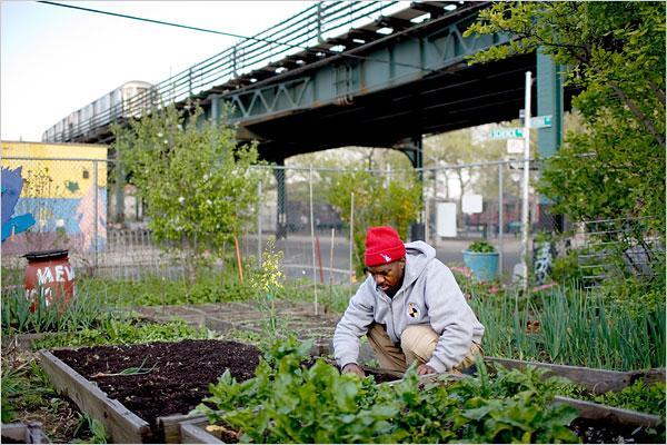 the talon urban farming takes off in detroit