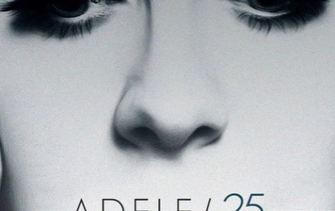 """Adele's """"25"""" sends fans into a frenzy"""