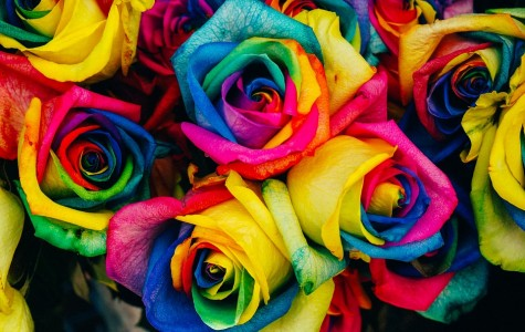 Different colored flowers hold different meanings