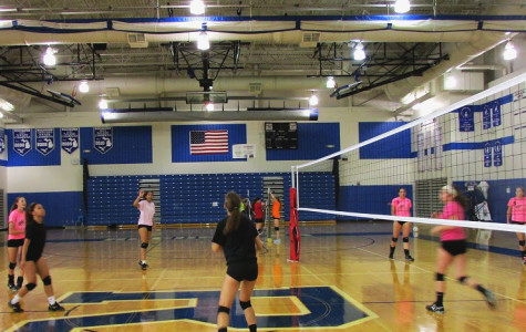 Volleyball begins a new season