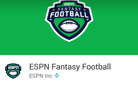 Fantasy sports explained