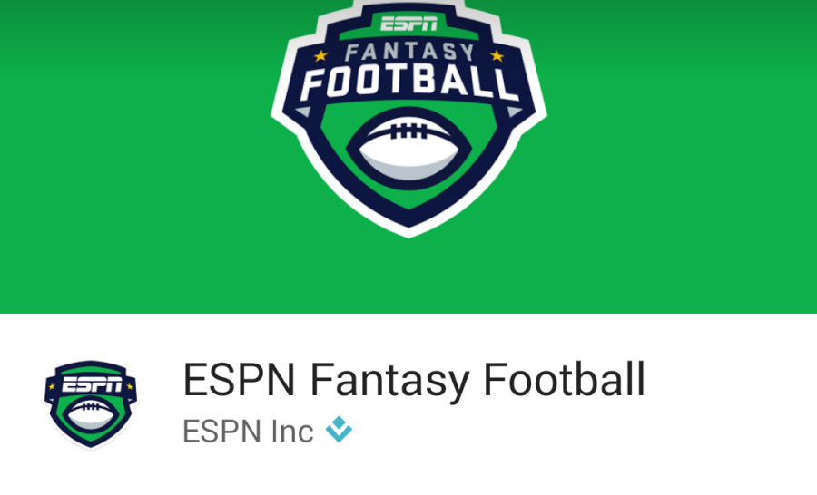 Fantasy sports explained