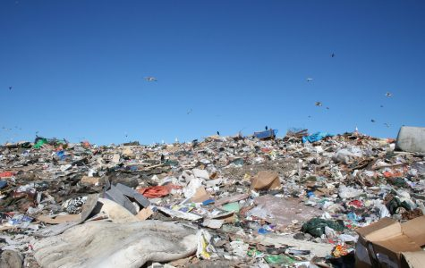Michigan Outlaws Banning Plastic