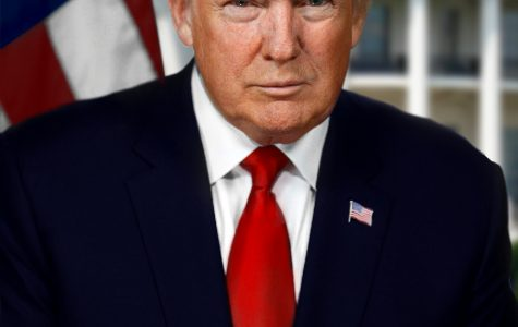 Trump's first 100 days in office