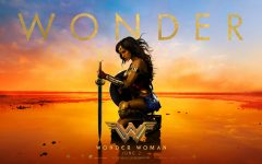 "Long-awaited ""Wonder Woman"" surpasses expectations"