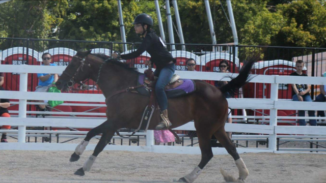 Coach Sandra Morgan's daughter riding her horse at a competition